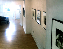 Stills from the Strand Gallery exhibition
