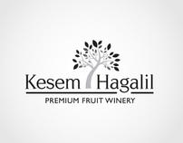 Fruit Winery Branding