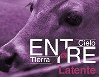 ENTRE CIELO Y TIERRA Latente