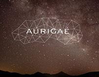 Aurigae