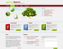 Website for web design services