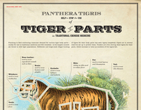 Educational Chart: Tiger Parts