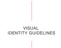 NSGB Visual Identity Guideline