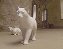 Ghost Cats