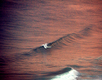 Bird's-eye view to Alanya Surfers