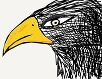 The hawk!