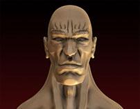Sculptris heads