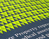 Vital Property Trust collateral
