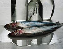 Fish & Bottles