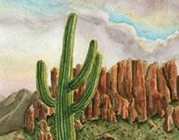 Superstitious Saguaro