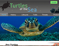 Turtles of the Sea website
