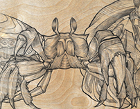 Crab Quartet