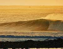 Golden Light Surfing