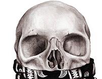 Skull | Drawing