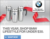 BMW & Blue Ridge work