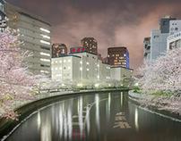 TOKYO's END
