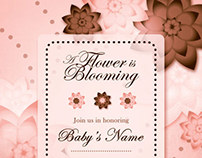 Pink & Brown Baby Shower Invitation