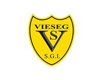 Email Marketing - Vieseg