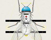 Headless Flies