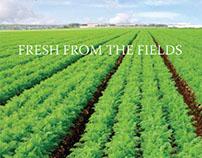 Produce Express Brochure