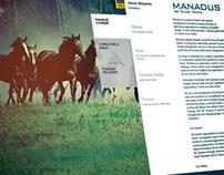 Branding Concept + Website
