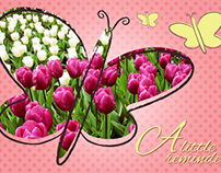 Spring Time Change Postcard Design | 2013