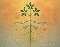 Marketing Collateral: 2013 Parish Stewardship