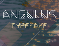 Angulus Typeface