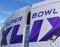 Super Bowl XLIX Custom Typography