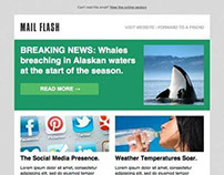 Mobile News email template
