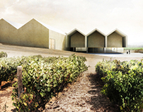 Winery in Samaniego