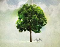 QEII - Ride Your Bike