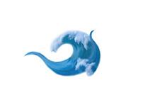 Jetty Surf - rebranding