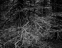Liminality (The Haxan Cloak)