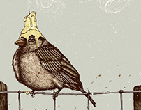 Bird in the light. Bird in the night.