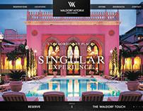 Waldorf Astoria - Concept Boards 2010