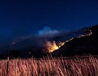 Alpine WIldfire