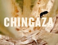 The Chingaza Moorlands