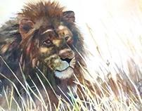 Dappled Lion