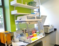 Genetics Laboratory and Offices: Interiors and Infill