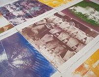 print it again! : photographic plates