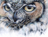 Owl Factory