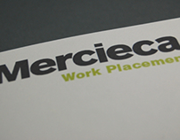 Mercieca - Work Placement Report