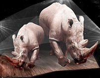 Rhino serie lights