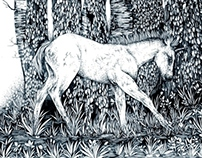 Unicorn Tale (Illustration)