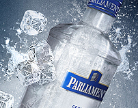PARLIAMENT / Website Design