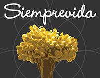 Siemprvida /Personal Card