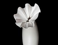 Ceramiche Mazzotti Emaldi