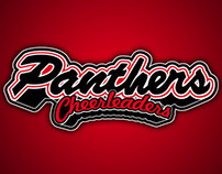 Panthers Cheerleaders Poster