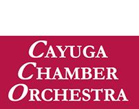 Cayuga Chamber Orchestra Media Plan